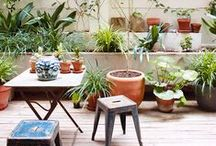 outdoors / beautiful porchs & outdoor spaces