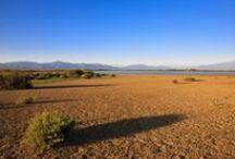 L'étang de Canet en Roussillon / Site d'observation classé Natura 2000 avec une faune et une flore exceptionnelle où plus de 200 espèces d'oiseaux migrateurs se côtoient toute l'année. #ILoveCanet