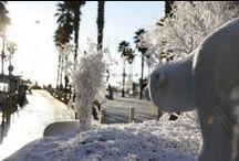 Noël à Canet en Roussillon / C'est magique... #ILoveCanet