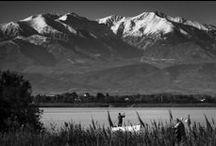 Canet s'affiche en Noir & Blanc / Clichés noirs et blancs de Canet en Roussillon. #ILoveCanet