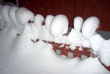 Veden vuosi 2: Lumi. Jää. Snow. Ice. / Winter. Snow, horror, isolation, sisu, guts, beauty, purity. Näyttely Veden vuosi. Exhibition Year of the Water.