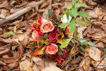 Wedding Season // Autumn / Celebrate your love in the cozy season...