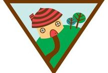 Brownie Household Elf Badge Ideas / Requirements for earning the Brownie Household Elf Badge:  Step 1: Save Energy.  Step 2: Save Water.  Step 3: Use Natural Products.  Step 4: Reuse or Recycle. Step 5: Clear the Air.  / by Brownie Girl Scout Badges