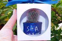 Progetto #32 / [MATRIMONIO FAI DA TE] Tutorial Bomboniera Cactus con scatola