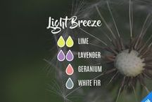 DIY Diffuser Blends: Aromatherapy Essential Oils