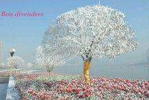 Happy / En la vida hay que encontrar a todo la parte positiva. Sólo se vive una vez, ¡sé feliz! www.mypersonalshopper.cat