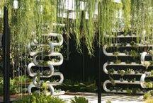 Vertical Garden / by Julius Bramanto