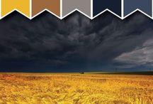 Colour Palette / by Julius Bramanto