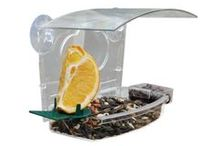 Window Bird Feeders / Feeders that attract seed eating birds to your window