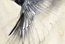 Artsy Avians—Birds in Art! / Wings and wildlife, whim and wonder...celebrate the joy of birds with bird art!