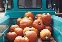 Fall Fabulousness / all things fall- food, decor, Halloween, costumes, Turkey day, treats, and more!