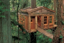 Treehouses / by Moon to Moon