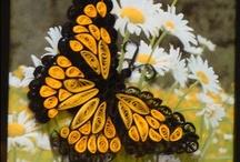 Butterflies and friends / by Pam McFadzean
