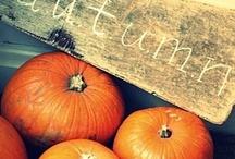Autumn / by Italian Summers