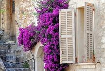 Doors,Windows,Porch's, Gates and Openings / by Kim Hellinga Hammar