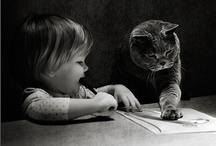 Black and White Kitty Pictures / by Kim Hellinga Hammar