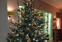 Christmas at The Vineyard / Enjoy Christmas at the Vineyard, Stockcross, #Newbury #Berkshire and maybe combine your stay with a trip to the Newbury #Racecourse or just enjoy the facilities including #gourmet #food and an extensive #wine cellar. / by The Vineyard Newbury Berkshire