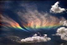 RAINBOWS REVEALED / by Pam McFadzean