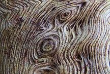 TREE TALES OF TEXTURE that tickle thy arty thoughts