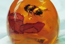 Amber. / Amber is fossilized tree resin( not sap), which has been appreciated  and valued from antiquity to present time for colour and beauty. Amber is made into a variety of decorative objects. Amber originates as a soft sticky tree resin and therefore sometimes contains inclusions of animal and/or  plant material. There are 5 classes of Amber defined on basis of their chemical build up.  / by Hollandaise