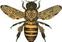 Illustrations / belles illustrations d'abeilles et bourdons