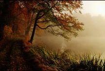 Autumn, jesień