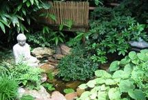 Feng shui/ Zen garden design