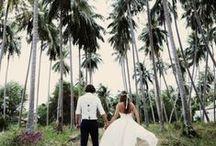 ✣ Beach Weddings ✣
