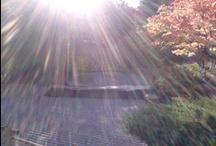 Ich liebe die freie Natur!