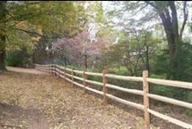 Deer Fences / Deer Fences installed by A. Anastasio Fence Company, serving Fairfield County, CT.