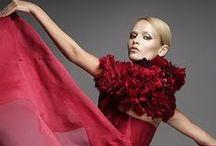 Fashion:RedCarpet