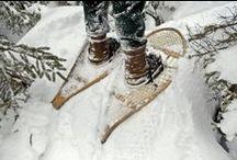 Winter Coziness