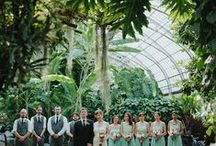 Conservatory Wedding / Weddings in conservatories and greenhouses