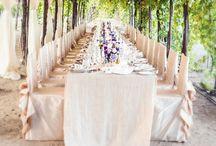 Winery & Vineyard Wedding