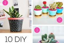 DIY - Home Sweet Pretty Home {Decorations & Projects} / The BEST DIY home decoration ideas, craft projects, tips and tutorials!  Lots of how-tos and advice for cutting corners and saving money on home projects and decorating for the every day do it yourselfer!