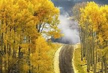 """Colorado - Travel Boldly Group Board - pin your boldest #Colorado #travel #photo here / Photos of the centennial state, Colorado.   Share pins of your favorite #Colorado #photos here on #Pinterest. If you'd like to pin here, follow the """"Colorado"""" board and please message me on one of the pins or here on Pinterest with your Pinterest ID/Name and your email.  Twitter - @JeromeShaw http://twitter.com/JeromeShaw .  Share your Colorado love here."""