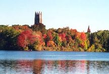 Wellesley College / by Pamm McNeil