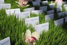 Green Wedding Flowers / A Fresh Green Look  http://aperfectpetal.com Facebook: https://www.facebook.com/aperfectpetal Instagram: @aperfectpetal 517 W Golf Rd, Arlington Heights IL