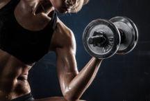 Fitness: WEIGHTS / Strength training