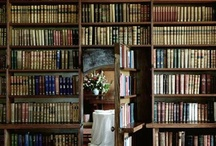 Mild obsession with bookshelves / by Marnus Van Der Merwe
