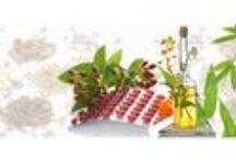 Health and Skin Disease Treatment / Herbs Solutions By Nature is just the right destination for all those who have been looking for a herbal cure to their relevant disease. We are acquainted with the fact that herbal medicines are a perfect blend of natural organics and have no side effects. Our experts have identified many different herbs that work naturally without causing additional damage to the body in the form of side effects.