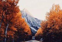 Autumn vibes / Autumn, Automne