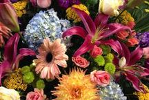 Dorothy's Signature Arrangements / We have our favorite arrangements that are terrific for any and everyday.