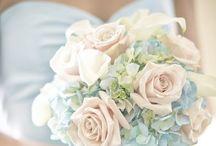 Wedding / 'Something old, something new, something borrowed, something blue'