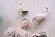 editorials / fashion photography & magazine editorials / by Sofia Cherry