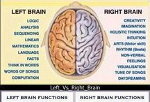 Personality and the brain / Left and right brain insights from Take Flight Learning, the folks who literally wrote the book on personality