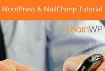 Email Marketing / Tutorials and Tips for Email Marketing with MailChimp & WordPress