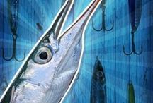 Hornhecht angeln | Fishing for garfish / Tipps zum Hornhechtangeln | Tips for catching garfish