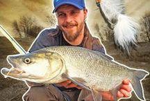 Fliegenfischen | Flyfishing / The world of flyfishing | Die Welt des Fliegenfischens