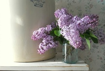 Lily of the Valley & Lilac